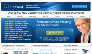 Bluehost full service web hosting